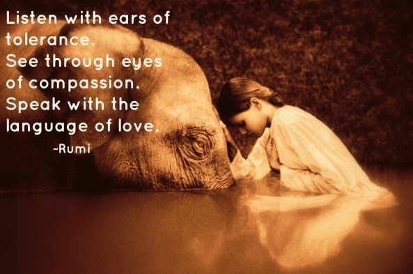 compassion-elephant-girl-rumi