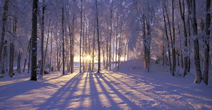 MAAS-Winter-Solstice-Return-of-the-Sun